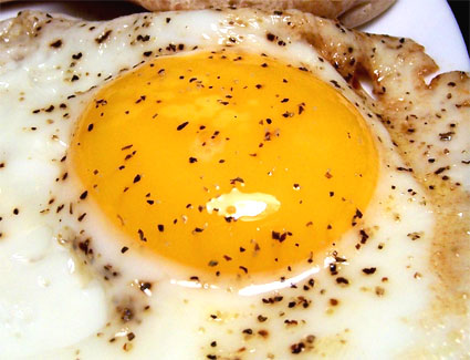 eggcloseup